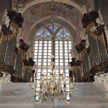 Świdnica, Katedra