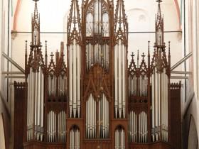 Schwerin (D), Dom, Friedrich Ladegast organ