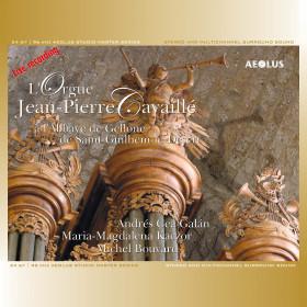 L'Orgue Jean-Pierre Cavaillé à l'Abbaye de Gellone à Saint-Guilhem-le-Désert
